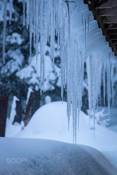 Icicles - Icicles and snow in the Blue Mountains of NE Oregon.
