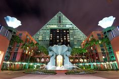 dolphin hotel disney
