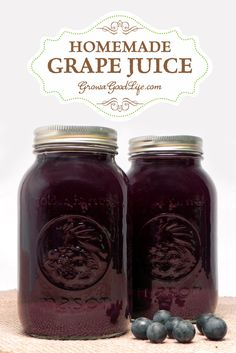 Concord Grape Juice - No Added Sugar How to make and can homemade concord grape juice with no added sugar. Grow a Good LifeHow to make and can homemade concord grape juice with no added sugar. Grow a Good Life Food Storage, Home Canning, Canning Recipes, Canning Tips, Preserving Food, Preserves, Just In Case, Frozen, How To Make