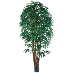 8' Rhapis Silk Palm Tree w/Pot (pack of 2) -- You can get more details by clicking on the image.