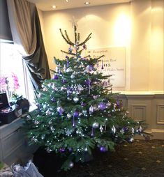Christmas Tree, decorated in purples and silvers, for a Surrey Hotel. Christmas Flowers, Christmas Tree, Christmas Arrangements, Table Centers, Surrey, Bouquet, Wreaths, Seasons, Purple