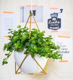 """DIY-Projekt aus meinem Buch """"Pflanzen-Deko kreativ & selbstgemacht"""", Erscheinungstermin Oktober 2014 im BLV Verlag - """"Fee ist mein Name"""""""