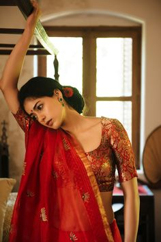 beautiful sheer saree, brocade blouse http://undercoverdiva.tumblr.com/post/86761597016/photoset_iframe/undercoverdiva/tumblr_n3swdxfZCc1sfg941/0/false