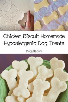 Looking for a super easy hypoallergenic dog treats recipe that you can make for Fido? Our chicken biscuits only have four gentle ingredients! Chicken And Biscuits, Dog Biscuits, Dog Treat Recipes, Dog Food Recipes, Cake Recipes, Irish Dog Breeds, Hypoallergenic Dog Treats, Wrinkly Dog, Dog Nutrition