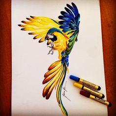 #art #design #illustration #magiccolors #araras #copic #watercolors #brasilidade #estamparia #pattern #cores #drawing #fashiondrawing  instagram:@rubianareolon