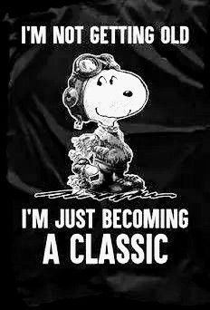 Designed and introduced in 1957 as classic as Helvetica. The best things were done in Source by Snoopy And Charlie, Charlie Brown And Snoopy, Snoopy And Woodstock, Peanuts Quotes, Snoopy Quotes, Peanuts Cartoon, Peanuts Snoopy, Joe Cool, Birthday Wishes