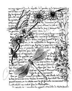 Collage libellule, format A6, tampon en caoutchouc Katzelkraft