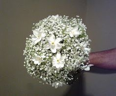 baby's breath with narcissus
