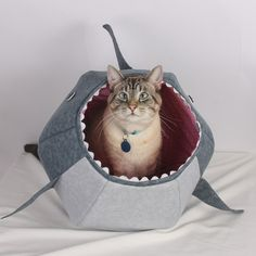 Great White Shark cat bed, for cats inclined toward the study of marine biology or oceanology.