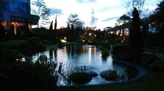 Inspired by Garden of Ninfa, italy. Field Trips, Hong Kong, Tin, Public, Italy, River, Inspired, Landscape, Garden