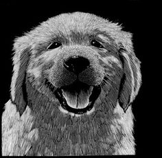 "This engraved image of a happy pup is a vehicle to raise money for NEADS and to see the book ""Another Language"" completed. There are 100 impressions in the edition printed on an archival paper. Each is signed and numbered and can be personalized on request. The paper size is 7.5w x 8.5. We offer it for $100 (plus $7.50 for US shipping and handling; please inquire for international rates) art by Barry Moser."