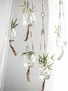 Jar Crafts, Home Crafts, Diy Home Decor, Room Decor, Decoration Plante, Branch Decor, House Plants Decor, Deco Floral, Macrame Plant Hangers