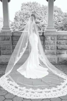 Beautiful cathedral veil