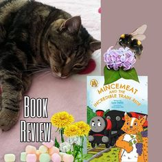 "Pauline Reid (New Zealand 🇳🇿) on Instagram: ""#bookreview #bookrecommendation Does anyone enjoy reading about cats in children's books? I know if my cat Chloe could read I'm sure she…"" Train Rides, Book Reviews, Book Recommendations, Children's Books, New Zealand, Chloe, The Incredibles, Reading, Cats"
