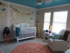 Baby Nursery Simple Baby Nursery Room Design With Turquoise Crib ...