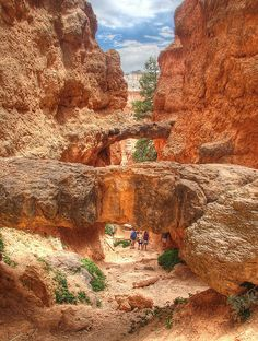 Twin Bridges, off Navajo Loop Trail, Bryce Canyon National Park
