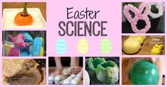 Cool science experiments for kids with a Spring and Easter theme. Make eggs bounce or sparkle, learn about chicks, grow carrots, crystal bunnies, candy experiments