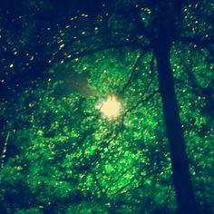 like a spotlight in the dark