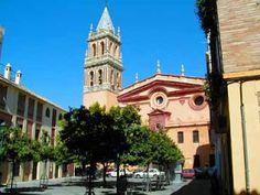 Sevilla tiene alrededor de 69 monumentos religiosos entre iglesias, capillas, ermitas, conventos y basílicas.