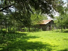 Ragland Ranch - Ragland Ranch is a charming 292-acre property located near Buda in western Hays County. Historically managed for agriculture, the ranch is instrumental in balancing the impacts of regional development that threaten the water quality of the Barton Springs Edwards Aquifer.