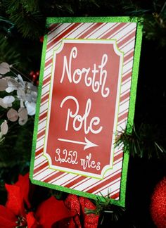 North Pole Party Christmas/Holiday Party Ideas | Photo 1 of 24 | Catch My Party
