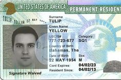Green Card to the USA! Who can participate in the government lottery? Green Card Application, Credit Card Application, Tarzan Y Jane, Netflix Movies To Watch, New Year's Eve Appetizers, Passport Online, Birthday Breakfast, Unbelievable Facts, Biscuit