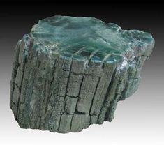 Slice From A Vanadium-rich Petrified Tree Limb  --  Holbrook, Navajo Co., Arizona