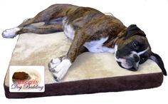 $62.99-$129.99 Your Pet will love this 3-layer, 3-inch thick memory foam dog bed. This ultimate comfort and support bed is great for pets of all ages, especially pets with arthritis or bone, hip, or joint problems. Built with a 1-inch dense polyurethane foam base layer, a 1-inch medium soft center foam layer, and a 1-inch premium visco convoluted memory foam memory foam top layer to allow for exc ...