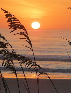sunrise, south anastasia island, (crescent beach, st augustine, florida) | 9 july 2013