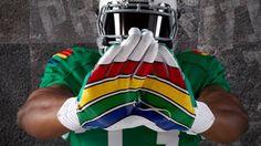 university of hawaii mascot rainbows - Google Search