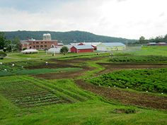 local food coops and correctional facilities. for more pins see the urban imagined https://pinterest.com/urbanimagined/