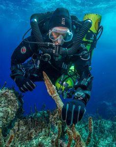Nuevos tesoros recuperados del 'Titanic del mundo antiguo'