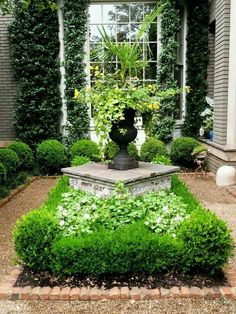 Boxwood garden - Beautiful gardens decorate many of the homes located in downtow. - Boxwood garden – Beautiful gardens decorate many of the homes located in downtown, Charleston, So -