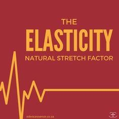 elasticity natural hair