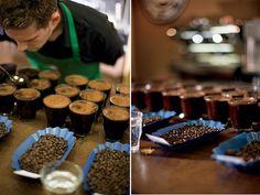 coffee cupping - Google 검색