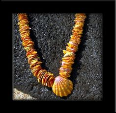 Hawaiian Sunrise Shell Chip Lei
