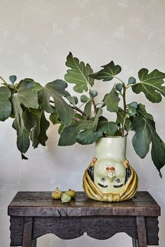 Fun and cheeky Sicilian head vase rests on antique oak side table with fresh fig leaf arrangement in front of dusty pink muted floral wallpaper. Anthurium Waltz in Bonaire by August Abode. Interiors by Stefani Stein. Photography by Jenna Peffley. Small House Renovation, Mosaic Coffee Table, Local Builders, Inviting Home, Los Angeles Homes, Garden Chairs, Pink Wallpaper, Mosaic Glass, French Vintage