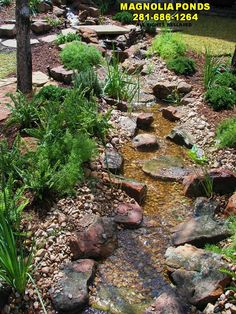 backyard ponds | Magnolia Ponds and Water Gardens. Serving The Woodlands, Spring ...