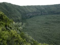 Mount Longonot; inside the  crater