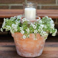 Best Country Decor Ideas for Your Porch - Candle And Flower Pot Centerpiece For Your Porch - Rustic Farmhouse Decor Tutorials and Easy Vintage Shabby Chic Home Decor for Kitchen, Living Room and Bathroom - Creative Country Crafts, Furniture, Patio Decor and Rustic Wall Art and Accessories to Make and Sell http://diyjoy.com/country-decor-ideas-porchs