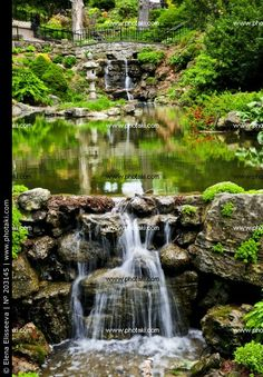 http://www.photaki.com/picture-waterfall-and-pond-waterfall-summer_203145.htm