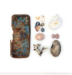 Fiji Beachcombing series No.7  by Jennifer Steen Booher