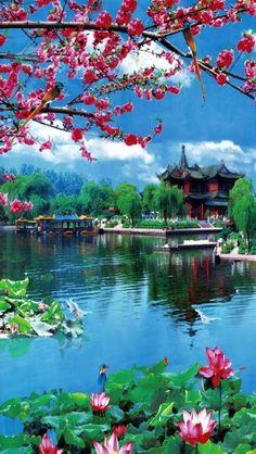 Pin on Beautiful nature Beautiful Roses, Beautiful World, Beautiful Gardens, Beautiful Places, Nature Pictures, Cool Pictures, Beautiful Pictures, Beautiful Nature Wallpaper, Beautiful Landscapes