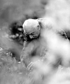 Stanley Kunitz. Poet Laureate. Gardener. Fiercely in love with life for more than a century.