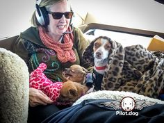 I'm up, are we there yet? This flight is for, four dogs that were either abandoned or put up for free on Craigslist. Four innocent dogs that were left on their own because their owners didn't want them anymore. See their story at https://pilot.dog/4806/pet-vet-dog-rescue-flight-helps-save-four-dogs