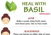 WAYS TO HEAL WITH BASIL