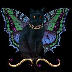 fairy gifs | cat fairy