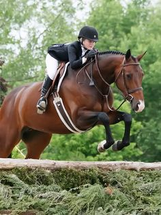 Dark theme, nylon fleece girth, slightly lighter saddle, raised padded bridle