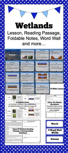 In this package you receive a slideshow lesson exploring the wetland biome. Key subjects and terms touched upon within it focus on defining wetlands overall, different types of wetland such as bogs, swamps, marshes, fens and the water profiles associated with each, what a watershed is, common plants and animals found within wetlands, benefits of wetlands, and risks facing wetlands.
