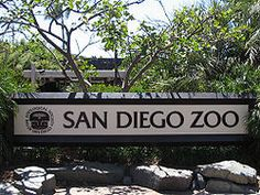 You know the weather will be perfect every day, so check out couponsforthezoo.com to snag a bundled discount for the San Diego Zoo as well as many other attractions around town.